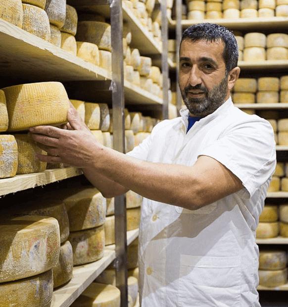 Steiakakis Cheesemaker